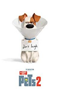 View details for The Secret Life of Pets 2